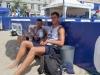 Sitkówka plażowa Plac Wolności (3)