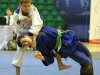 Judo Arena (12)