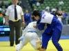 Judo Arena (4)