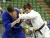 Judo Arena (5)