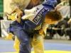 Judo Arena (9)